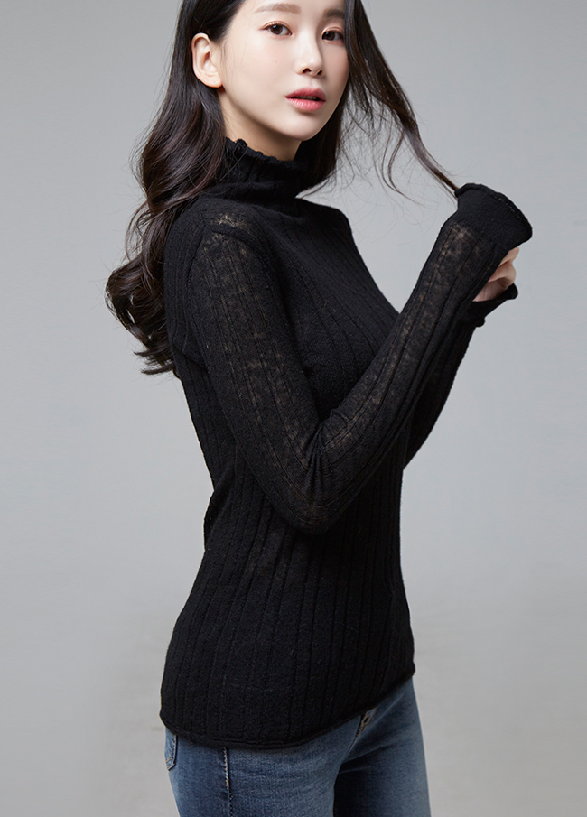 (2FNT100) See-through look Corrugated Harp Highneck Knit